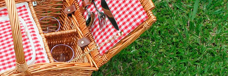 Ausflug mit Picknick
